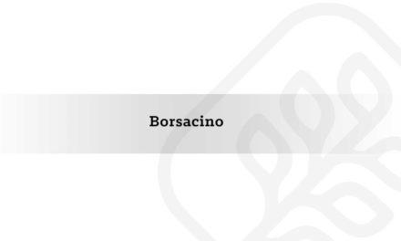 Borsacino