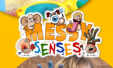 Messy Senses Ltd